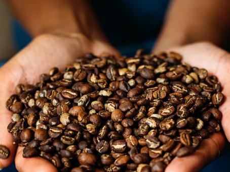 ETHIOPIA: Coffee Sensory Bin