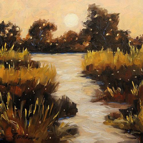 Crépuscule sur le marais