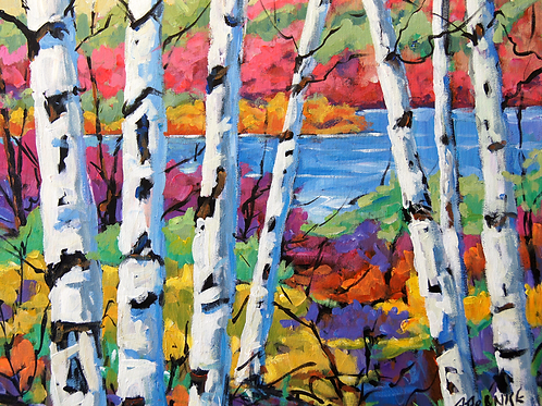 Canadian Birches