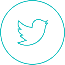 twitter-logo-outlineAsset 2.png