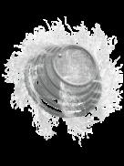 Tornado® Coil de Embolización