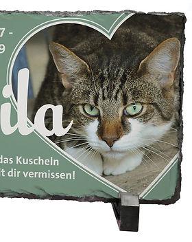 Schiefertafel Katze.JPG