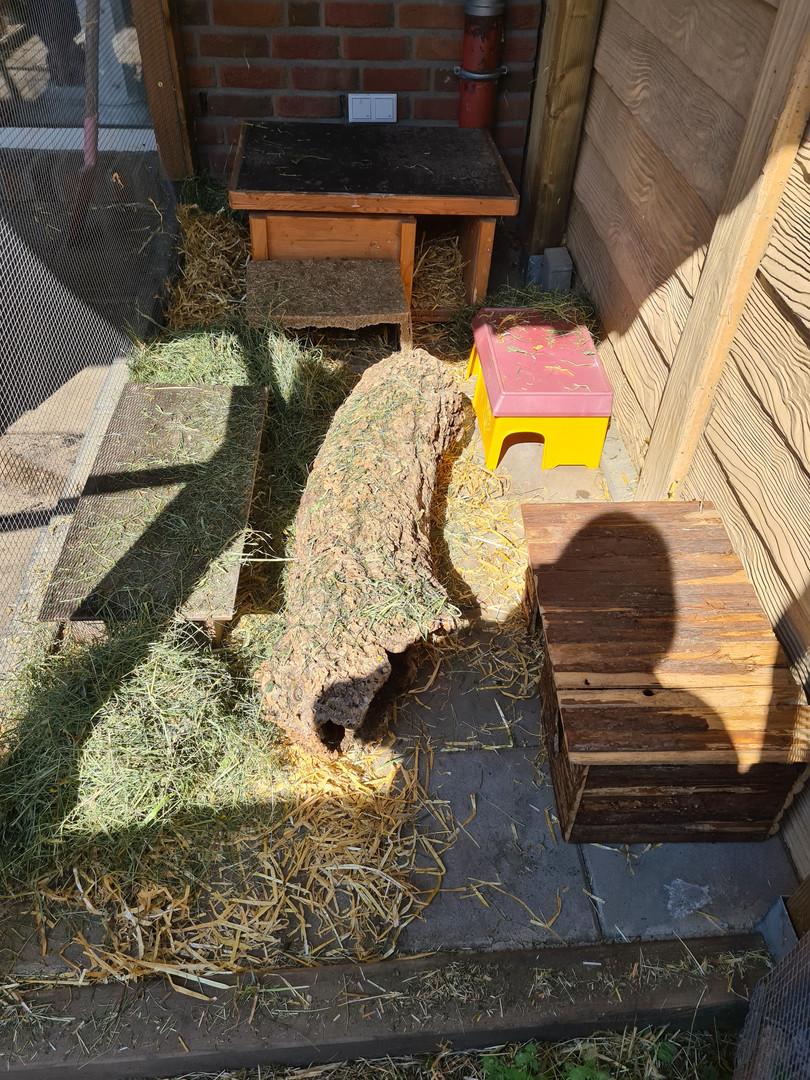 4 qm Meerschweinchen Stall