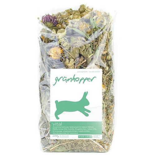 500g Grünhopper Vital | Mischfutter für Schnupferkaninchen | Größe M
