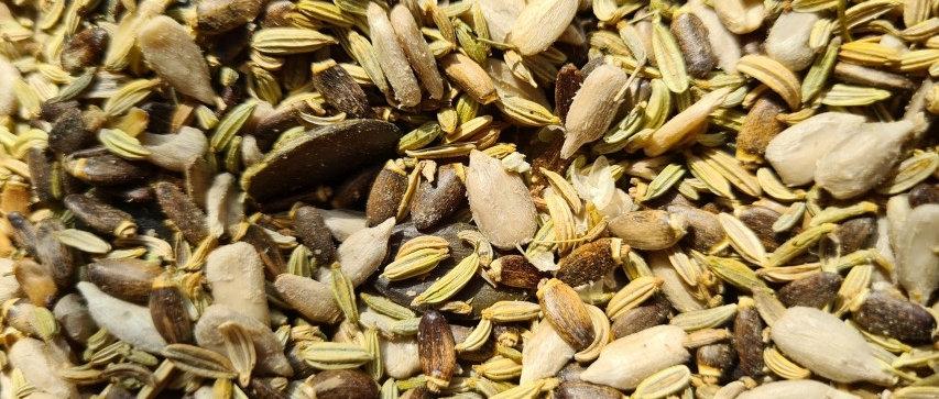 Zwei Kerne und zwei Samen Mix