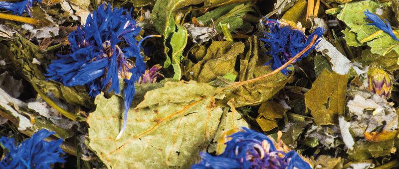 Blüten- und Kräutertraum