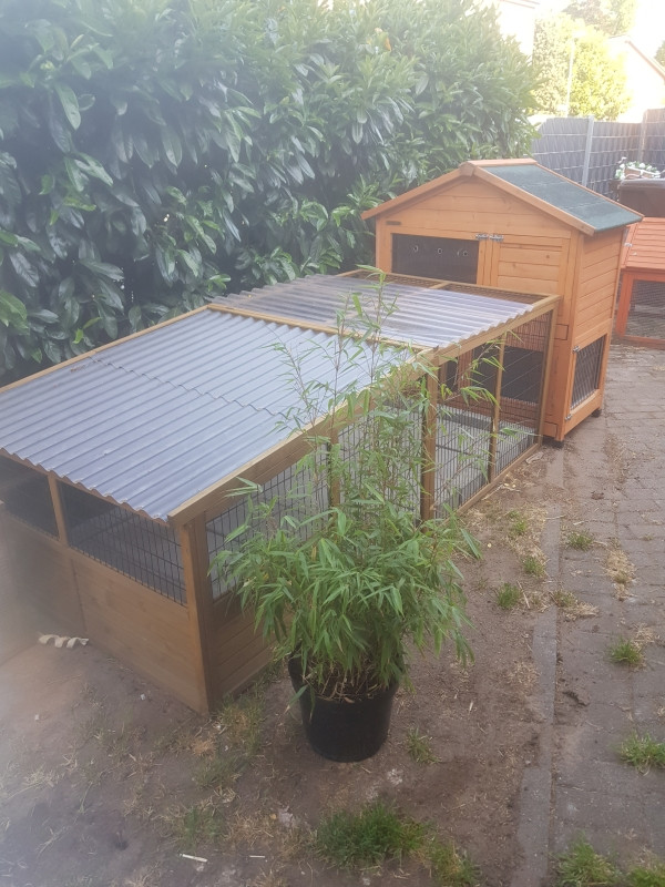 Kaninchengehege mit Stall 2.jpg