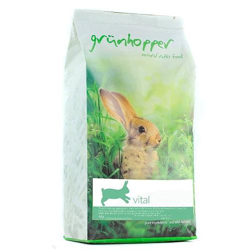 2kg Grünhopper Vital   Mischfutter für Schnupferkaninchen   Größe XL