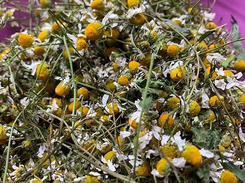 500g Kamilleblüten    DIE Heilpflanze gegen fast alle Krankheiten