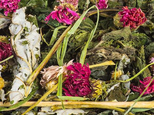 Blütenzauber Mischung