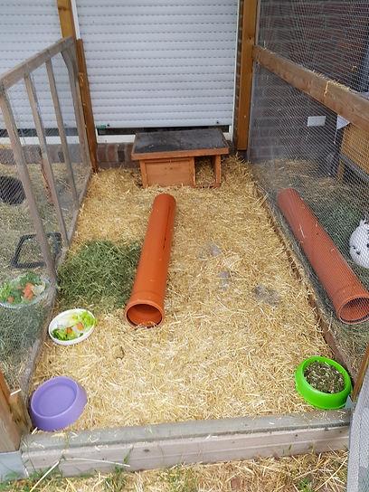 4 qm Kaninchen Außengehege.jpg