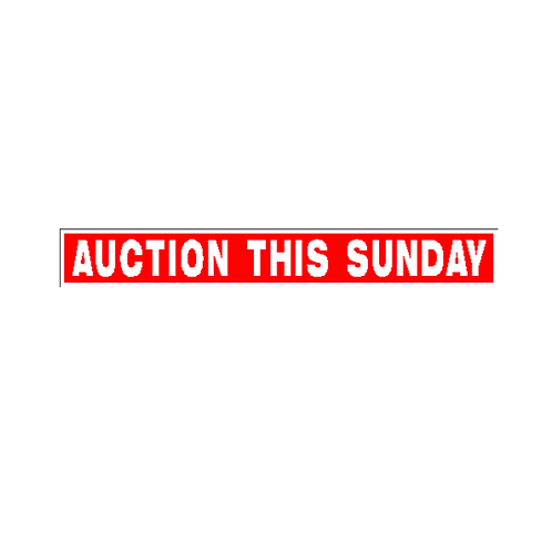 Generic Product - Auction This Sunday Sign Strip(900mm x 120mm)