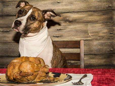 Toxic Thanksgiving Foods