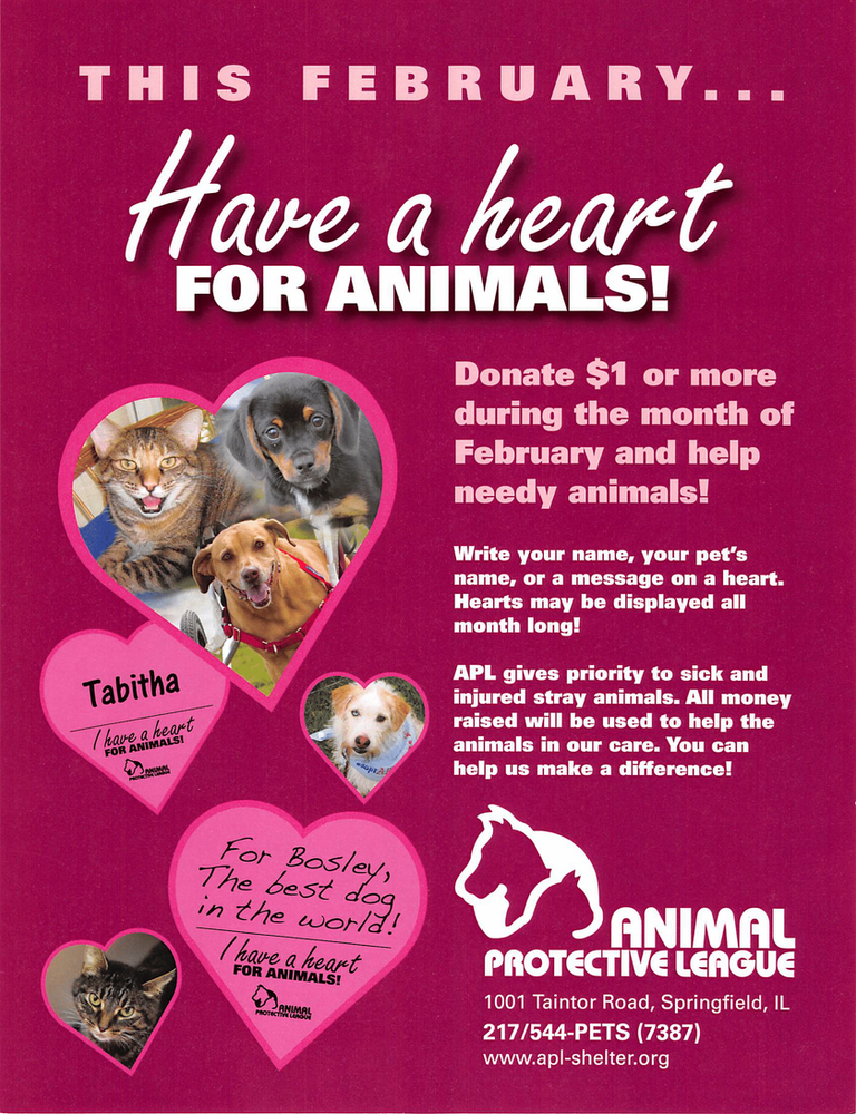 Have-A-Heart this February and help us support the Animal