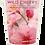 Thumbnail: Wild Cherry
