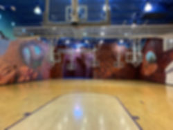 Basketball Court at Treehouse Athletic Club