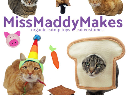 Welcome to my site- Making the Most out of MissMaddyMakes