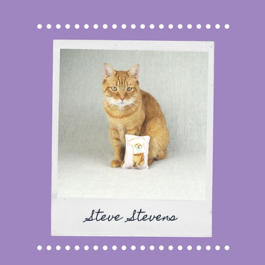 Brown Polaroid Papercraft Love Your Pet
