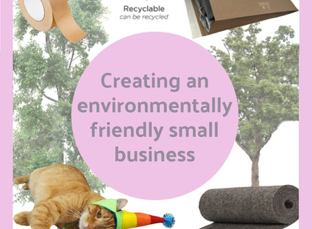 Creating an Environmentally Friendly Small Business