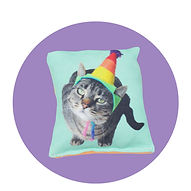 cat toy15t.jpg