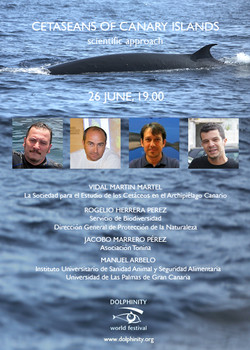 Cetacean of Canary Islands