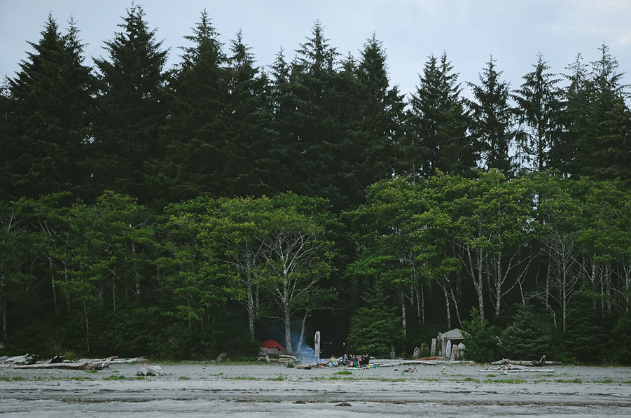 Campers in the Woods
