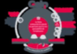 infographie_services_geiq_ptp_web_transp