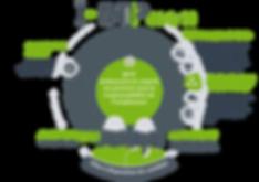 infographie_services_IBTP_web_transparen
