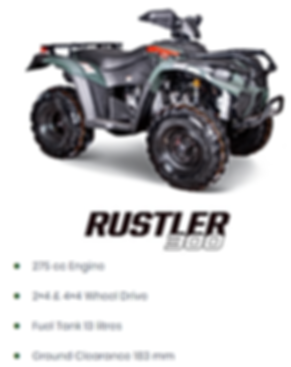 linhai rustler 300.png