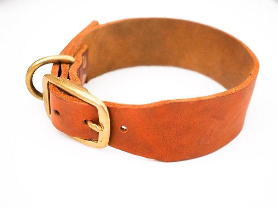 Halsband Fettleder Standard
