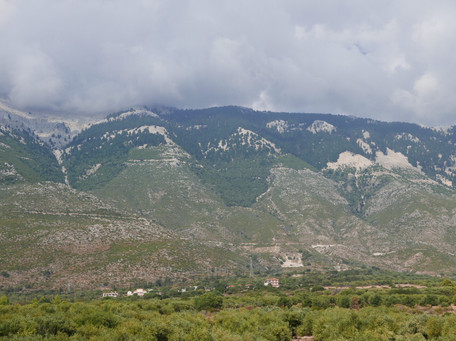 Ainos from Lourdata