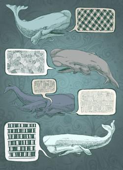 Whale Talk.jpg