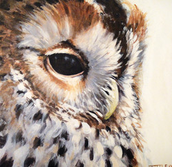 Owl Painting.jpg