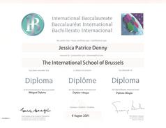ib diploma.png