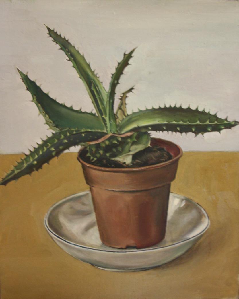 Amelia Power, Cactus