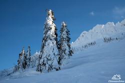Chiemgau im Winter