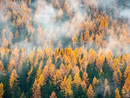 Nebelstimmung in den Dolomiten
