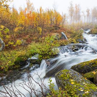 Senja Herbst