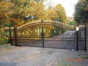 Electric Gate 12