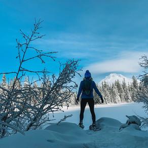 Alpine, Skinny or Snowshoe?