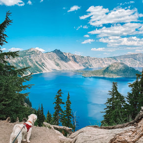 3 Best Things to Do at Crater Lake in 2020