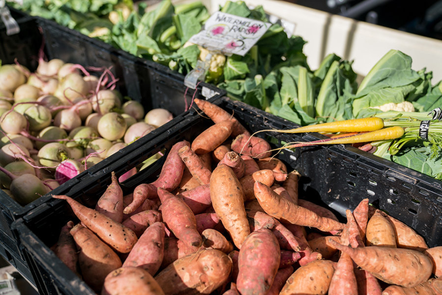 Memorial_Villages_Farmers_Market-17.jpg