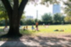 River_Oaks_River_Oaks_Park-7.jpg