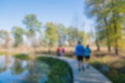 Memorial_Villages_Arboretum__Nature_Cent