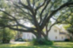 Tanglewood_Homes-20.jpg