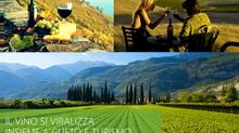 Enoturismo e Covid: difficoltà e nuove chance per il Turismo di Prossimità