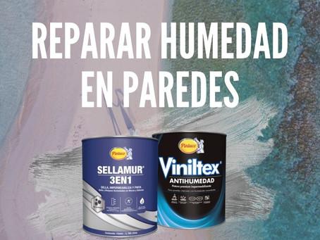 Pintura para la humedad: cuál comprar