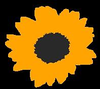 girasole stilizzato arancione.png