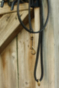 Handmade, hand stitched leather dog leash with solid brass bolt snap and solid brass O-ring