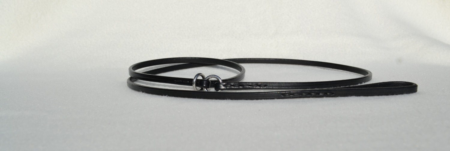 Show Collar/Show Lead Combination